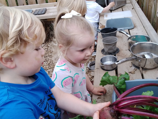 Farm to Fork: A guide for little green fingers