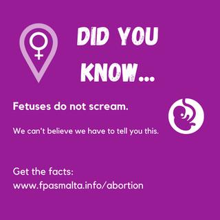 Silent Scream Fetus