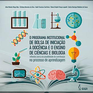 Programa-institucional.jpg