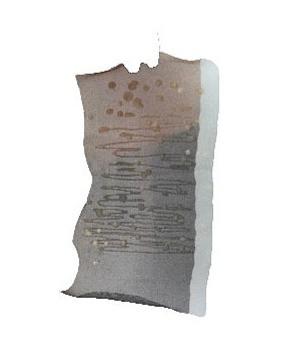 Textile Sample 20