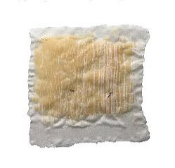 Textile Sample 19