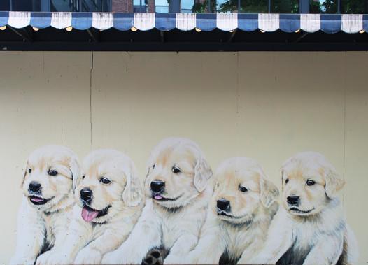 Palihotel Puppy Mural