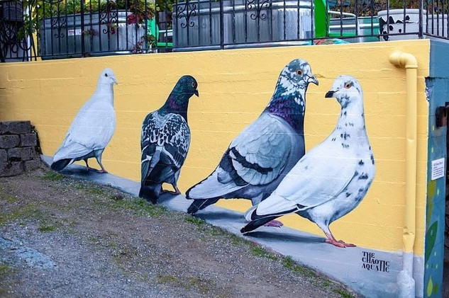 Hill House Pigeon Mural