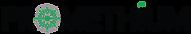 Promethium Logo