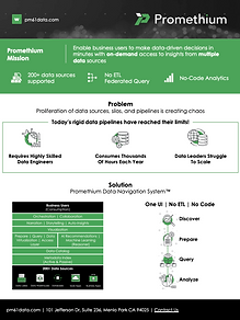 202110 Promethium Company Info Sheet Data Fabric.png