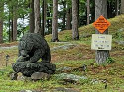 Don't Feed the Bear
