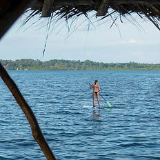 Paddle at Dolphin Blue Paradise