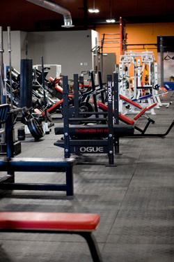 Flat/ Incline and Decline Benches