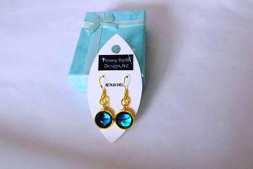Blue Paua Shell on 18k fine gold classic hook Earrings