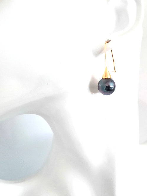 Stunning Large Peacock Black Pearl Earrings in Gold