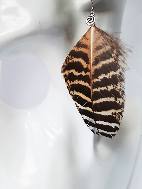 Beautiful Female Peacock Natural Feather Earrings
