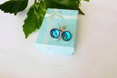 Blue Paua Shell on .925 fine Silver Leverback Earrings