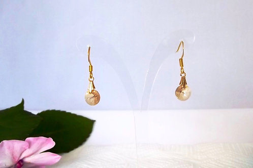 Swarovski Round Golden Shadow Crystal Earrings on Gold or silver