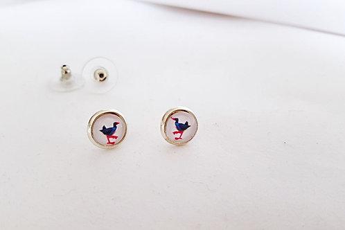 Cheeky Pukekos- Silver Earring Studs