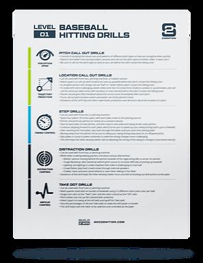 S2 Cognition_Level 01 Baseball Hitting D