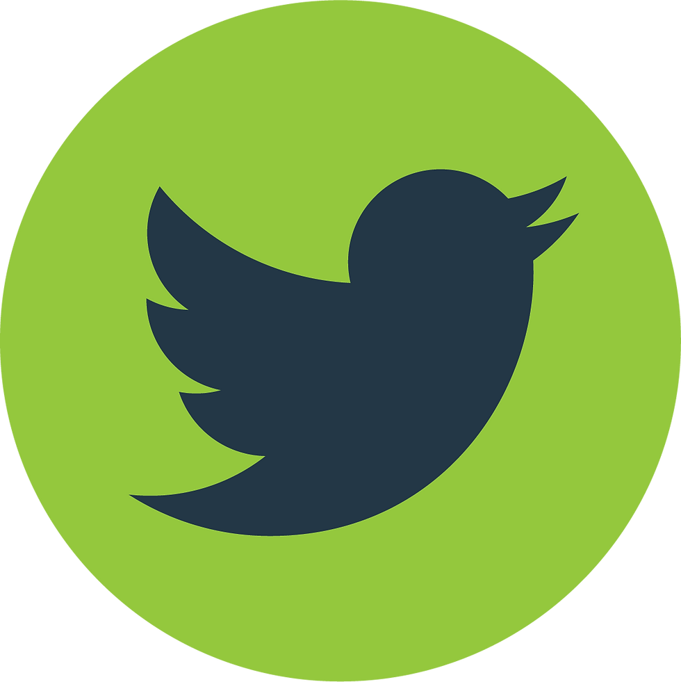 S2_Icon_green_twitter