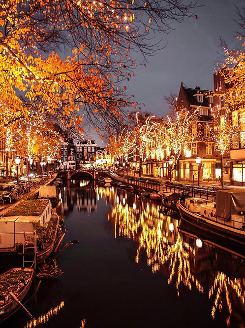 Amsterdam Christmas Lights