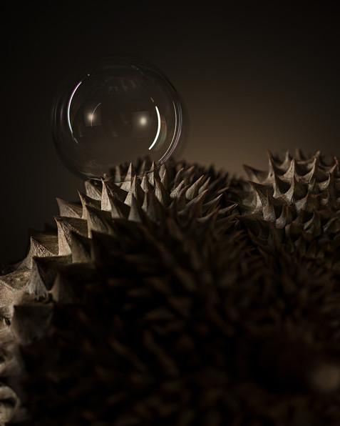 2019_02_22_Edzard_Durian_Stinkfrucht_Per