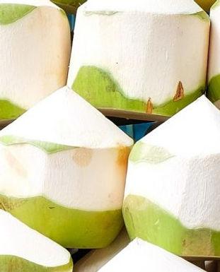 jonge_kokosnoten.jpg