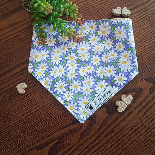 Field of Blue Daisies Bandana Priced From