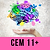 CEM Mock Exam 4 & Feedback Session