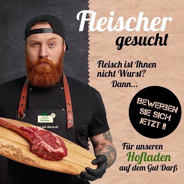 Fleischer.png