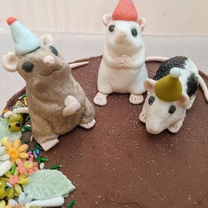 Chocolate Rat party cake