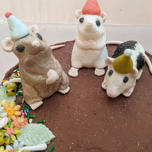 Chocolate Rat party cake