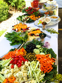 Appetizer Buffet at MTCO Outdoor Company Gathering