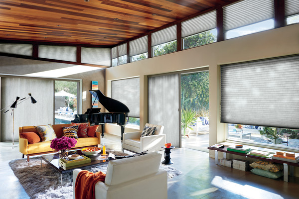 Duette Honeycomb Shades and Duette Vertiglides
