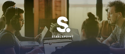 stablepoint image.jpg