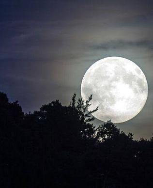 Ylva Fullmåne.jpg