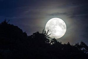 Y Fullmåne.jpg