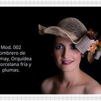 Mod. 002 a.jpg