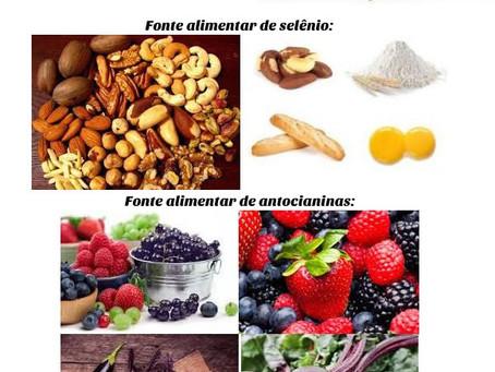 Alimentos que podem auxiliar na concentração e na memória