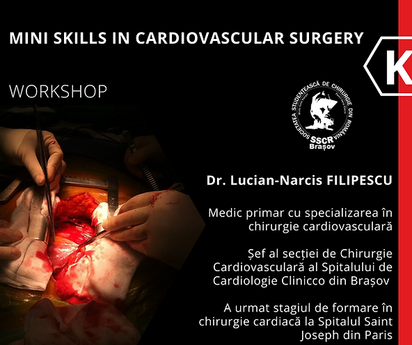 Workshop filipescuxsscr.png