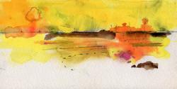 Prairie Yellow