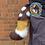 Thumbnail: AWD Tail