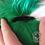 Thumbnail: WATERMELON DRAGON