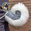 Thumbnail: Husky Tail