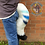 Thumbnail: Striped Ice Tail