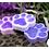 Thumbnail: Soapy Paws