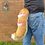 Thumbnail: Medium Striped Canine Tail