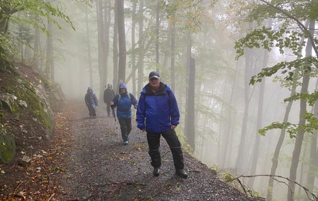 Wander-Plausch im Nebel