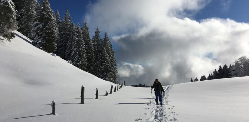 Schneeschuhtour Furna 2019-12 (8).jpg