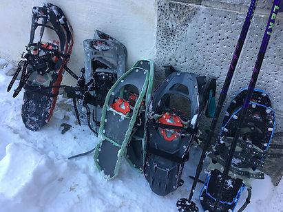 Schneeschuhtouren Ardez.jpg