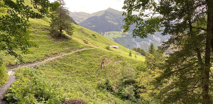 Alp Unterlavtina