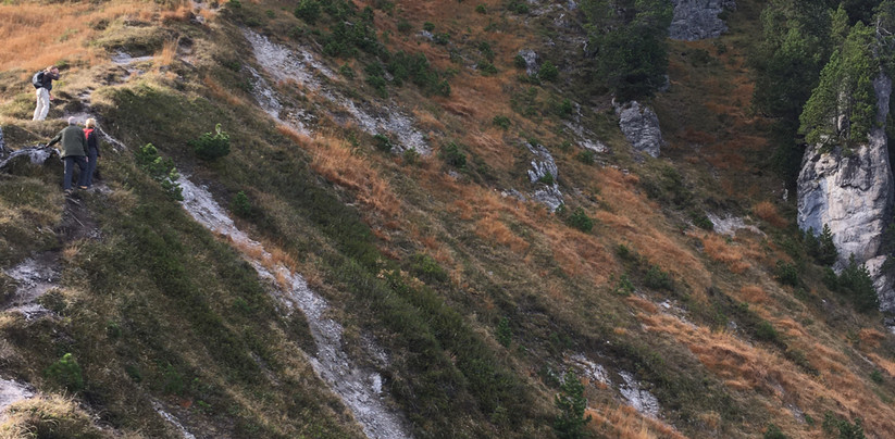 Oberiberg- Roggenstock (5).jpg