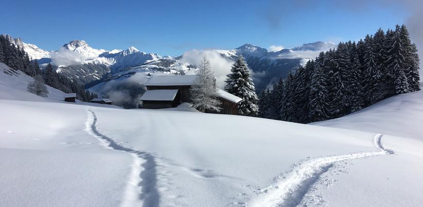 Schneeschuhtour Furna 2019-12 (6).jpg