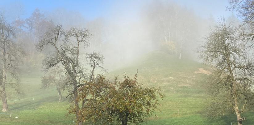 Nebelstimmung im Tösstal